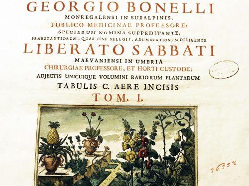 A Roma la mostra De Herbis con Andreco